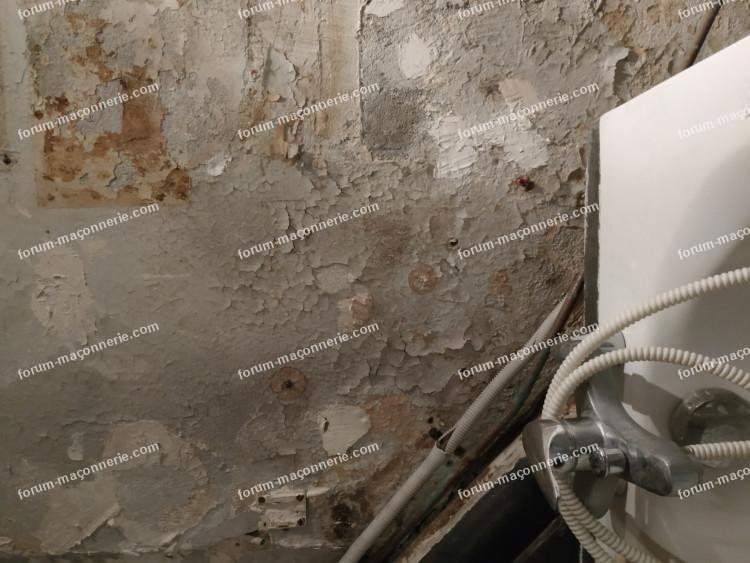 chaux pour rénovation mur salle de bain