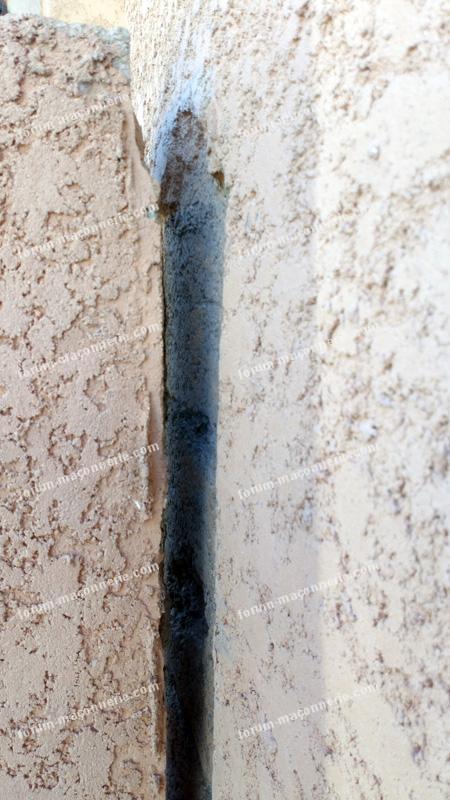 maçonnerie fissures escalier extérieur