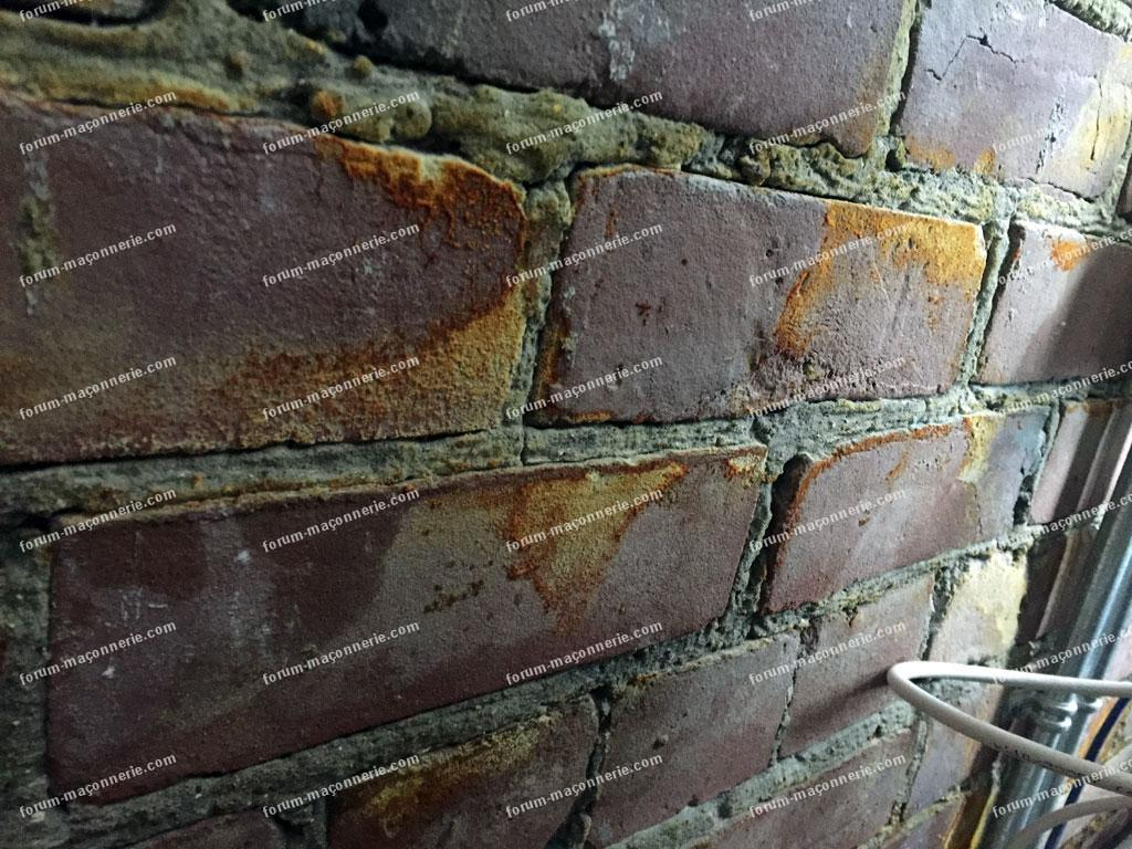 Faq ma onnerie humidit sur la brique et dans le vide sanitaire - Champignon vide sanitaire ...