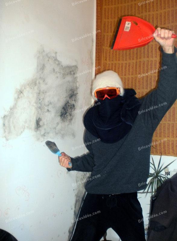 Alexis bricoleur lutte contre les champignons
