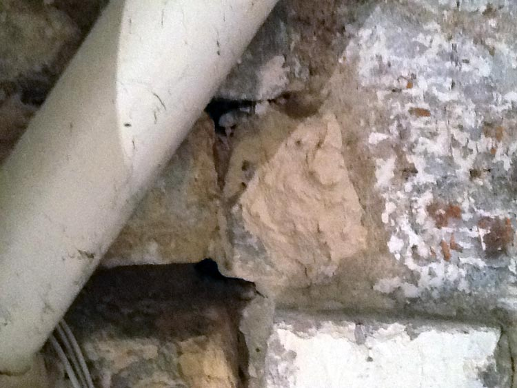 mur de cave humide photo 8