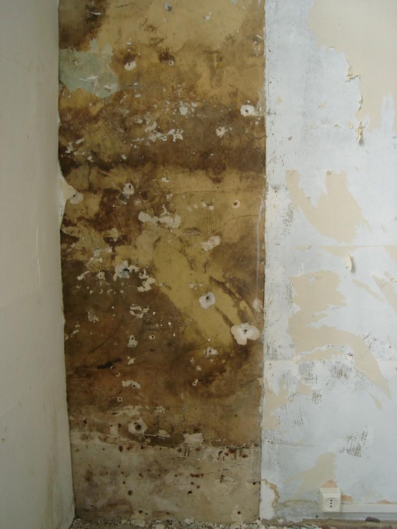 R ponse forum ma onnerie enlev carrelage d 39 une cloison for Plaque cuisine mur